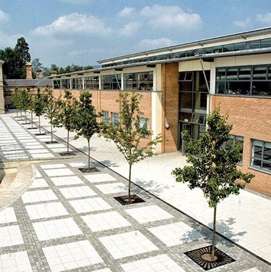 Rathmore Grammar School, Finaghy, Belfast featured image
